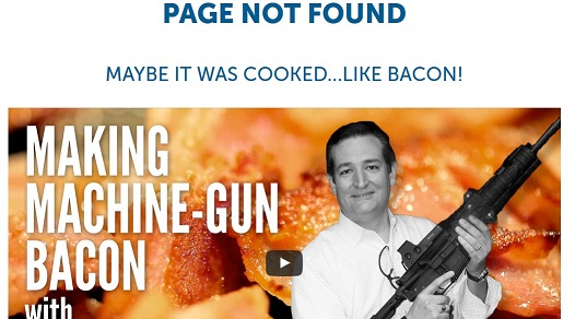 Ted Cruz 404 page